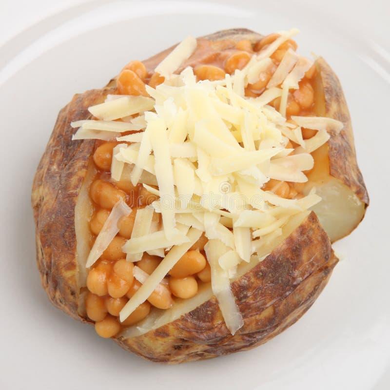 Aardappel In De Schil Met Bonen En Kaas Stock Foto's
