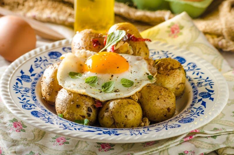 Aardappel in de schil met Spaanse peper en gebraden ei stock afbeelding