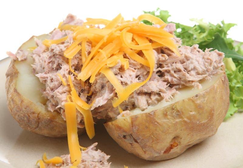 Aardappel in de schil met Tonijn en Kaas royalty-vrije stock fotografie