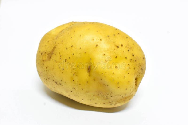 Aardappel op witte achtergrond royalty-vrije stock fotografie