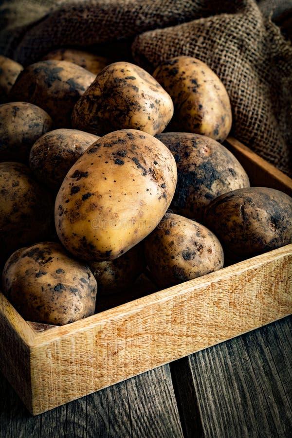 Aardappels in houten doos stock afbeeldingen