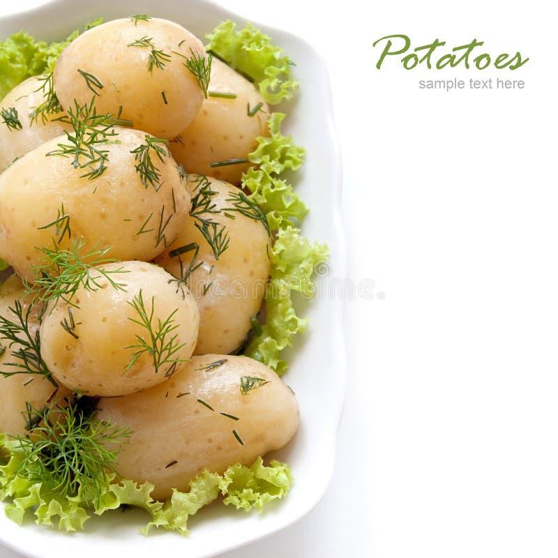 Aardappels met dille royalty-vrije stock foto's
