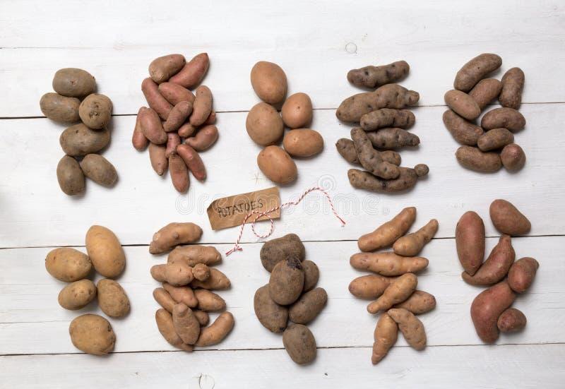 Aardappels op een wit houten raadsconcept royalty-vrije stock foto