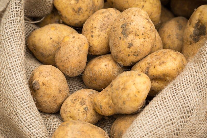 Aardappels in zak stock foto