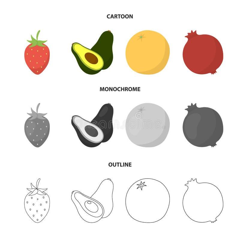 Aardbei, bes, avocado, sinaasappel, granaatappel De vruchten geplaatst inzamelingspictogrammen in beeldverhaal, schetsen, zwart-w stock illustratie