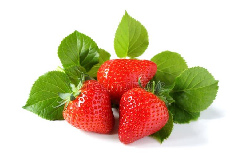 Aardbeien 1 stock foto's