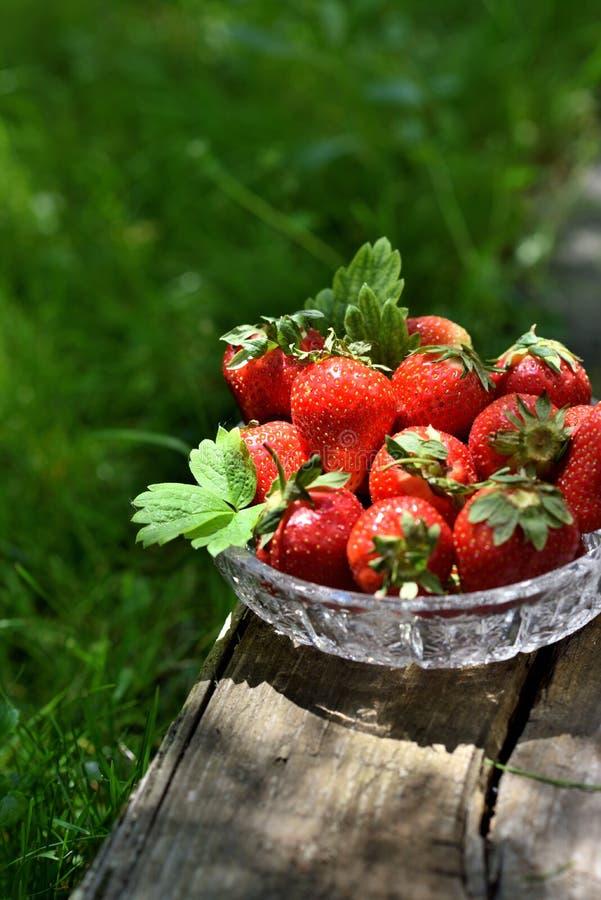 Aardbeien in boul buiten stock afbeelding