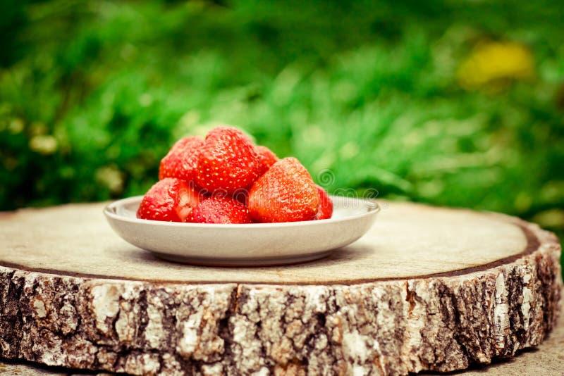 aardbeien in de tuin - verse vruchten en gezond het eten gestileerd concept stock afbeelding