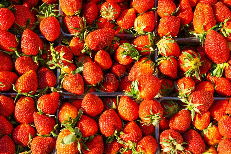Aardbeien in een container Rijpe bessen stock afbeeldingen