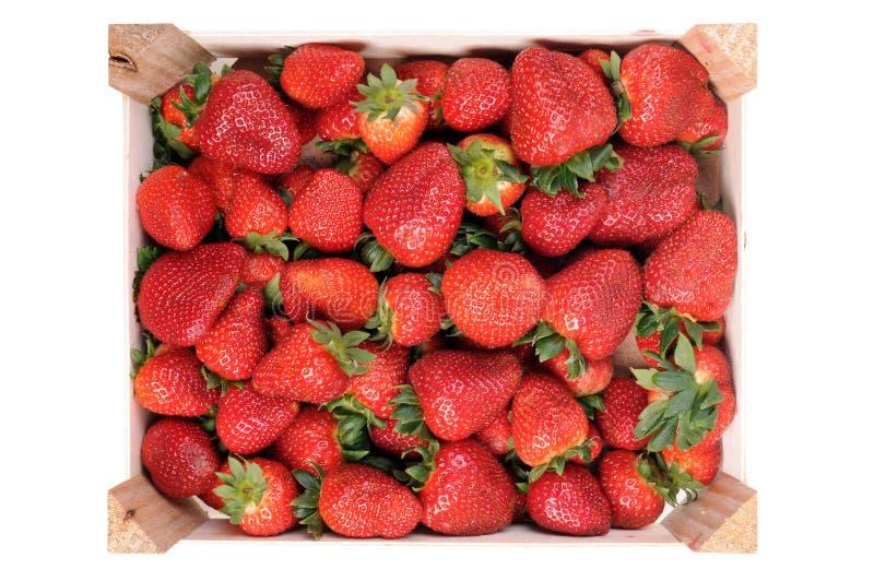Aardbeien in een doos royalty-vrije stock fotografie
