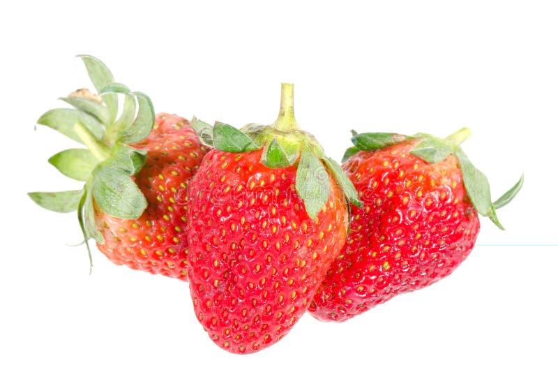 Aardbeien. Geïsoleerd op een witte achtergrond. royalty-vrije stock afbeelding