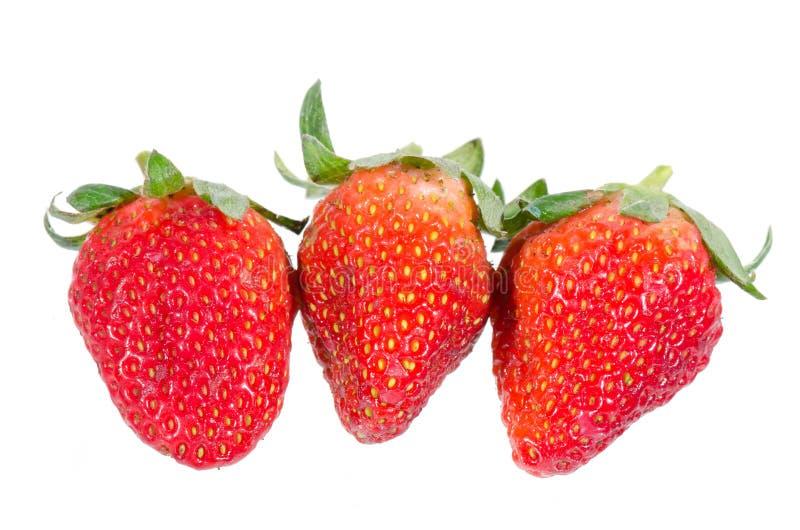 Aardbeien. Geïsoleerd op een witte achtergrond. stock fotografie