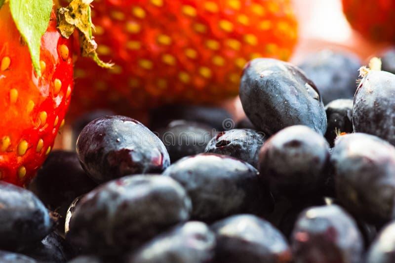 Aardbeien met bosbessen, close-up van bessen stock fotografie