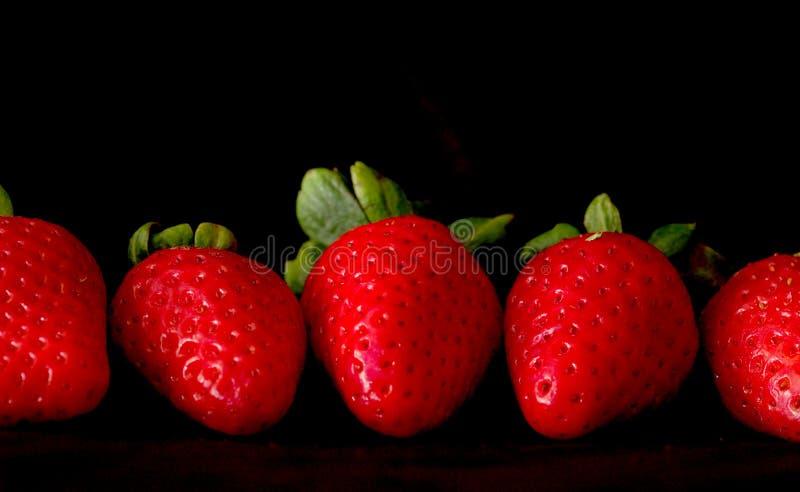 Aardbeien tegen Zwarte royalty-vrije stock foto's