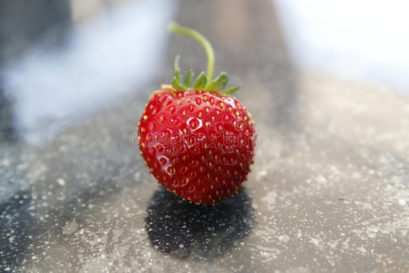 Aardbeifruit, rood en firma, van het hangen van mand vers wordt geoogst die stock foto's