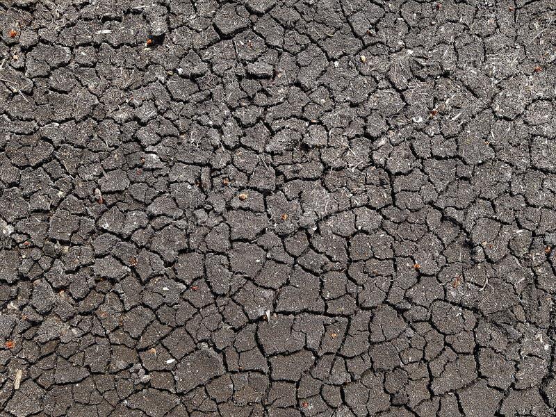 Aardegrond van gebrek aan water is gebarsten dat stock fotografie