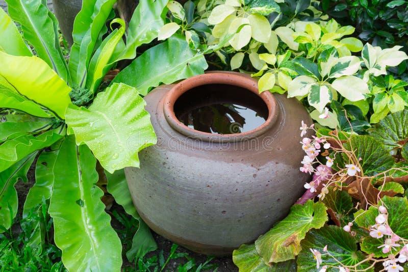 Aarden kruik in de tuin Thaise Kruiken voor opslagregenwater stock foto's