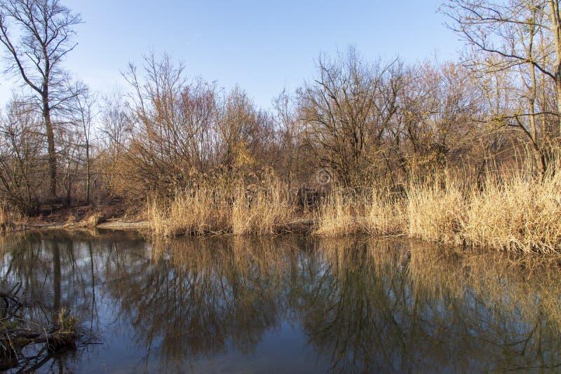 Aardfoto's van Szigetköz in Hongarije stock fotografie