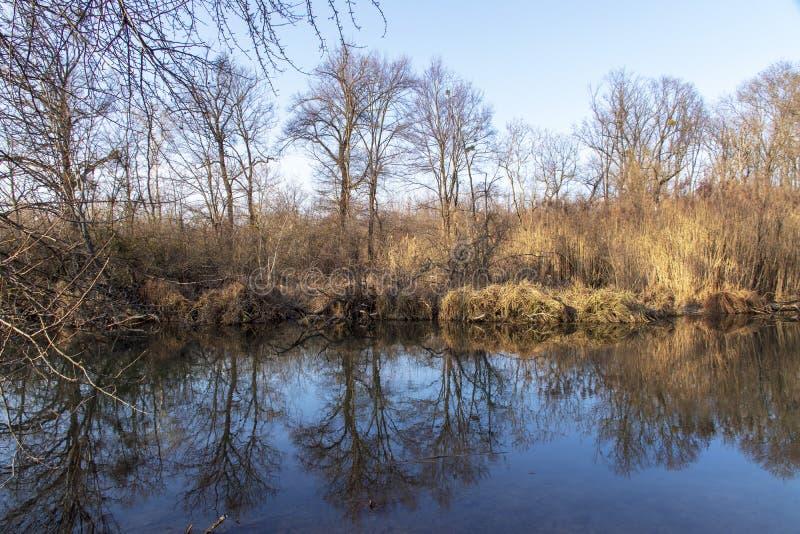Aardfoto's van Szigetköz in Hongarije royalty-vrije stock afbeelding