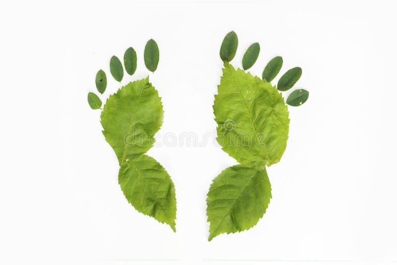 Aardgang - groene voet royalty-vrije stock foto