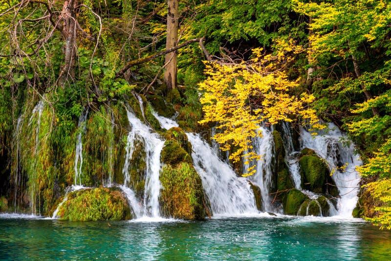 Aardlandschap - Groep watervallen in kleurrijk bos stock foto