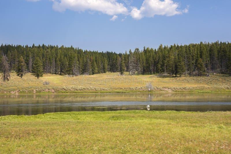Aardlandschap in Lamar Valley in het Nationale Park van Yellowstone op de zomer royalty-vrije stock foto
