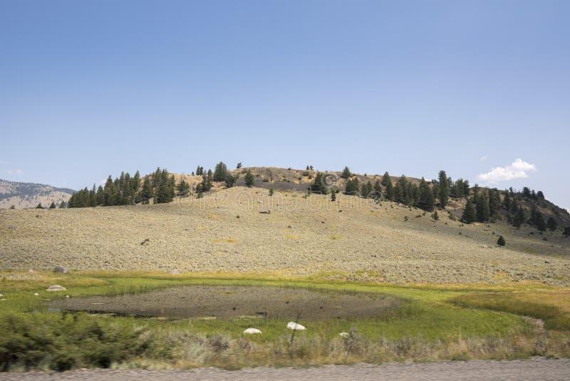 Aardlandschap in Lamar Valley in het Nationale Park van Yellowstone op de zomer royalty-vrije stock foto's