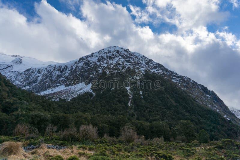 Aardlandschap met snowcapped berg en groen bos royalty-vrije stock afbeelding