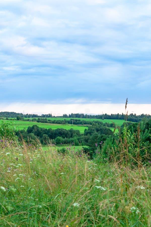 Aardlandschap van de purpere blauwe en roze zonsondergang van de schemeringavond bij landelijk dorps groen gebied stock afbeeldingen