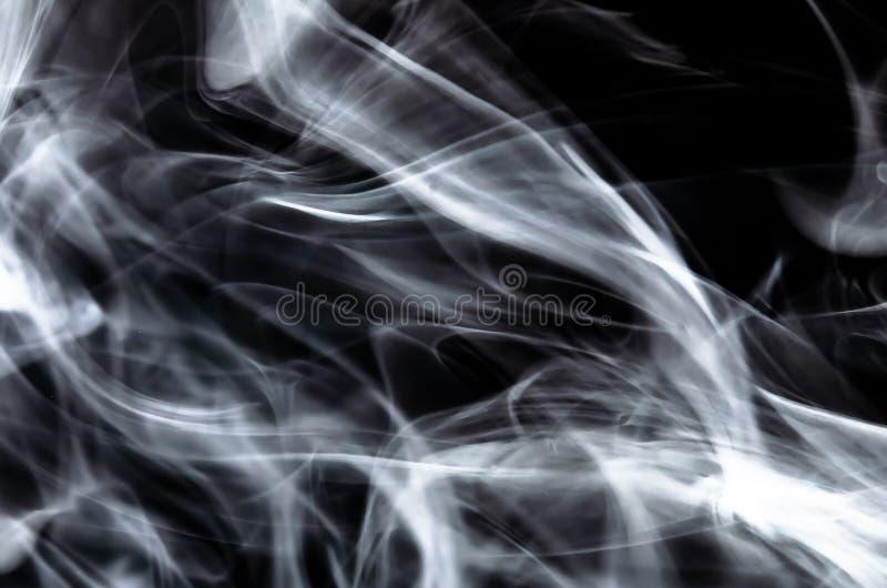 Aardsamenvatting: De Gevoelige Schoonheid en de Elegantie van een Bosje van Witte Rook royalty-vrije stock afbeelding