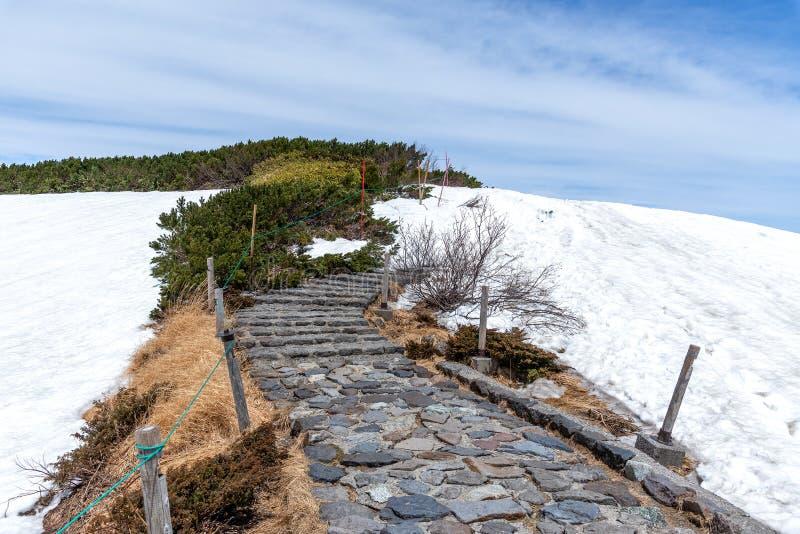 Aardsleep in Murodo op de Alpiene Route van Tateyama Kurobe stock foto