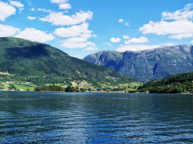 Aardstijging in het hout, het water van de fjord, Zonnige dagachtergrond stock foto's