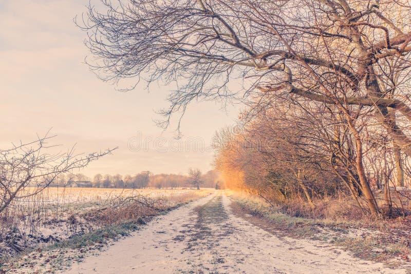 Aardweg bij wintertijd in de zonsopgang royalty-vrije stock afbeeldingen