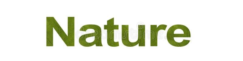 AARDwoord van groen blad dat op witte achtergrond, macroschot wordt geïsoleerd Concept: milieuvriendelijk, tekst vector illustratie