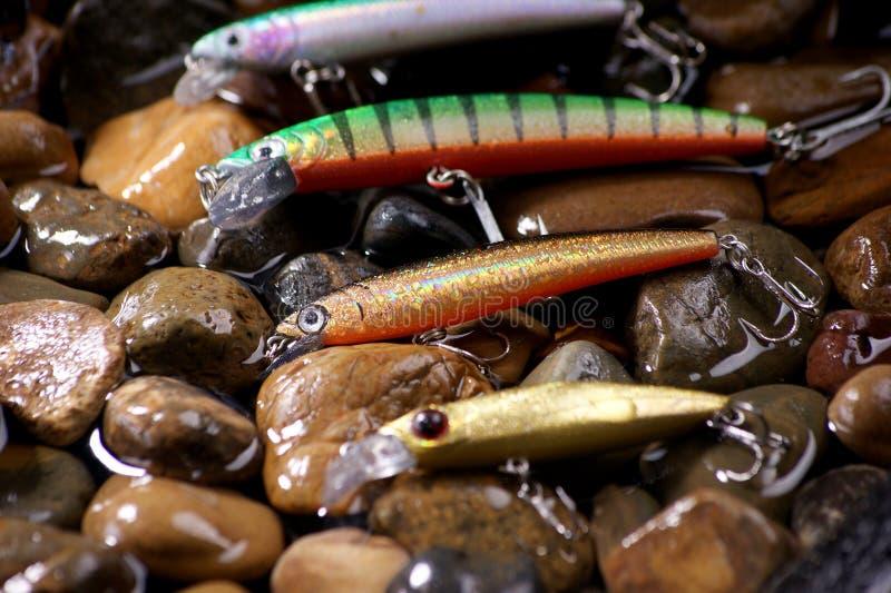 Aas visserij stock foto