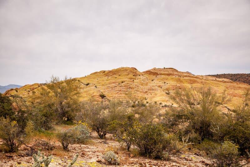 Abóbada amarela da rocha na floresta nacional de Tonto imagens de stock
