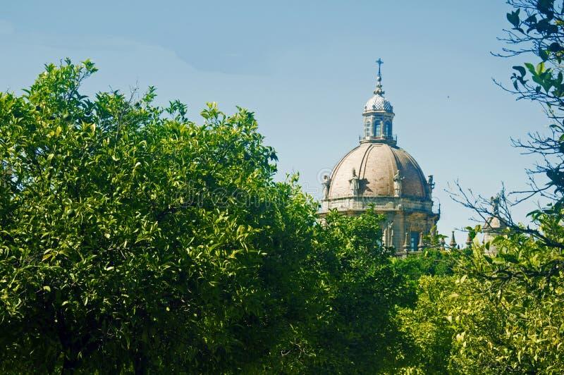 Abóbada cercada por árvores verdes, verão da catedral fotos de stock royalty free
