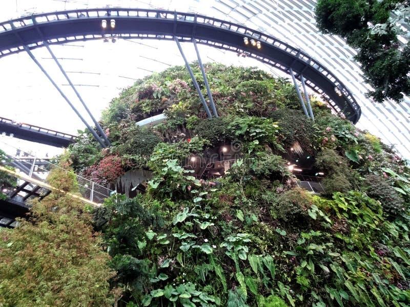 Abóbada da flor, jardins pela baía, Singapura fotografia de stock royalty free