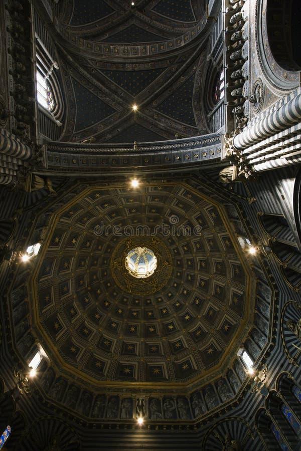 Abóbada interior na catedral de Siena. imagens de stock royalty free