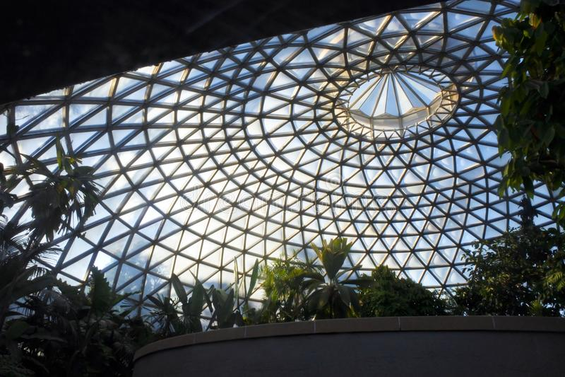 A abóbada tropical da exposição em jardins botânicos de Brisbane fotografia de stock royalty free