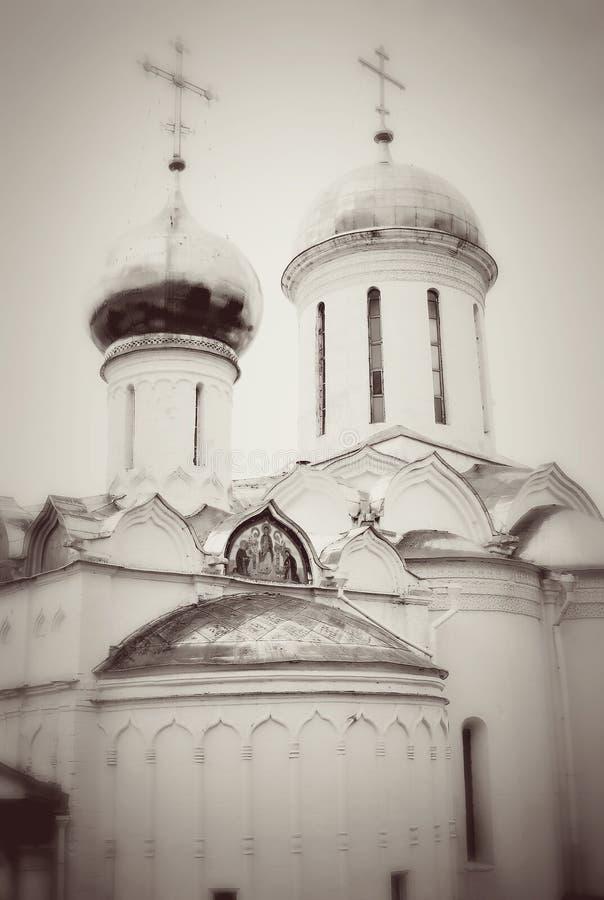 Abóbadas da igreja na trindade Sergius Lavra fotografia de stock royalty free
