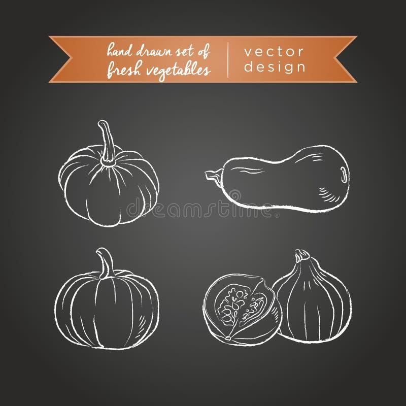 Abóbora Ajuste dos legumes frescos, inteiro, meio e mordido com folha Ilustração do vetor Isolado no quadro-negro ilustração stock