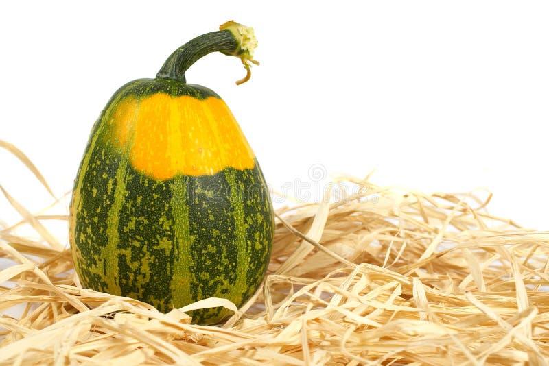 Abóbora amarela e verde imagens de stock royalty free