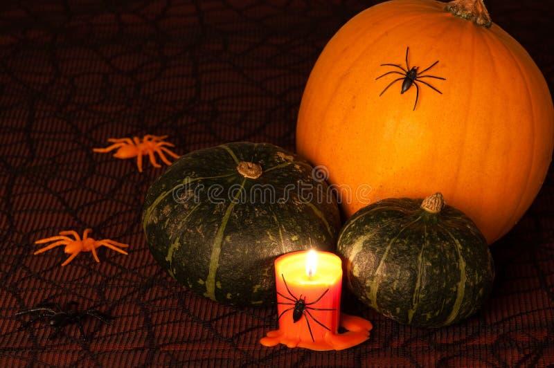 Abóbora & aranhas de Halloween imagens de stock