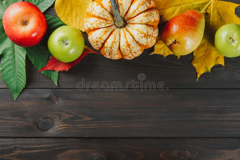 Abóbora com folhas de bordo coloridas, as maçãs maduras e a pera no fundo de madeira escuro Imagem sazonal do outono com espaço l fotografia de stock