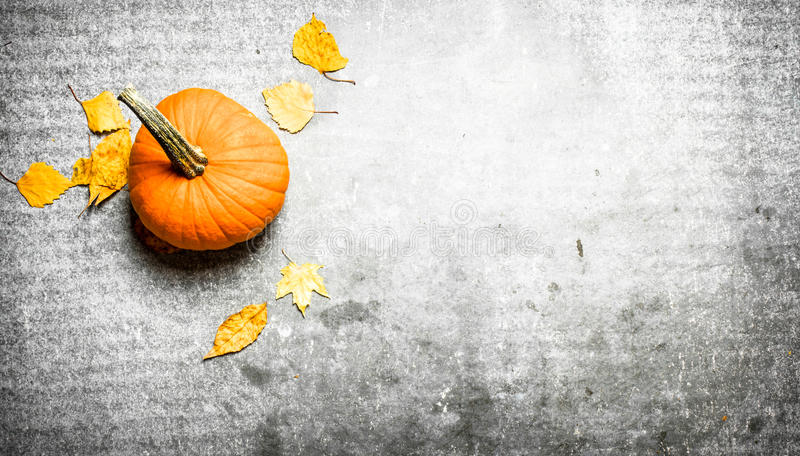 Abóbora com folhas de outono foto de stock