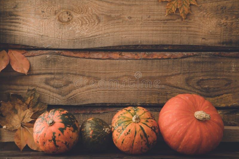 Abóbora com folhas, espaço para o texto cumprimentos sazonais, outono fotos de stock