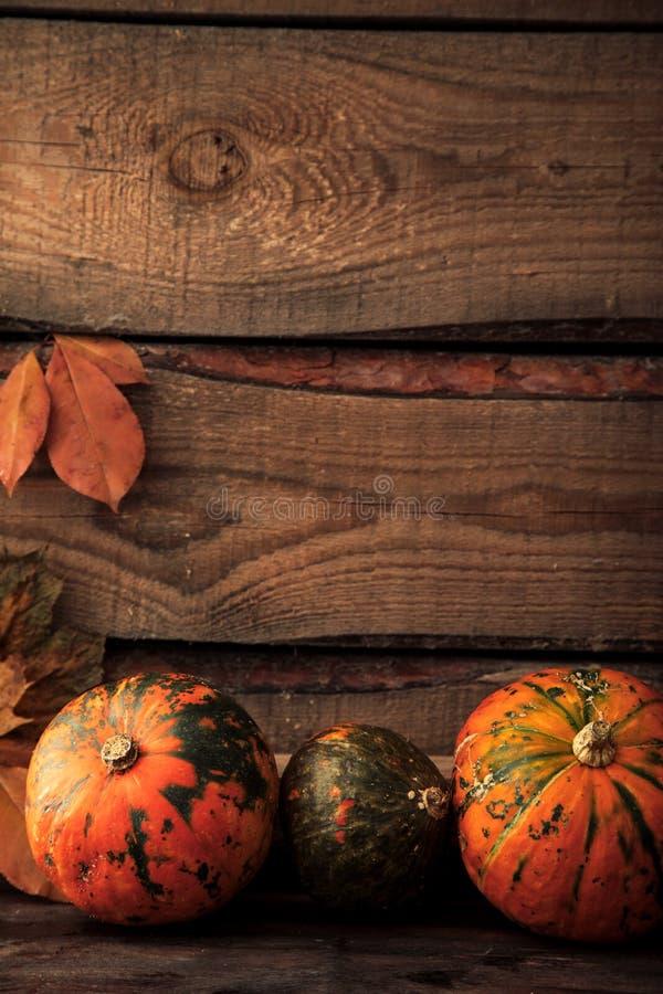 Abóbora com folhas, espaço para o texto cumprimentos sazonais, outono imagens de stock