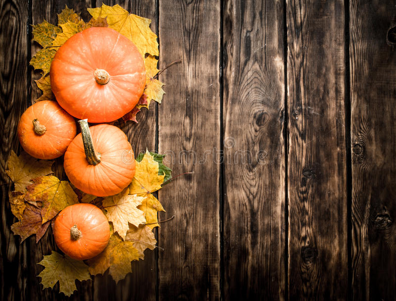 abóbora da colheita do utumn com folhas de outono fotos de stock royalty free