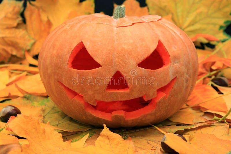 Abóbora de Halloween nas folhas de outono imagens de stock royalty free